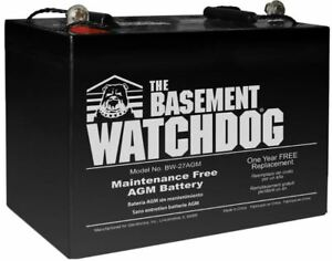 Maintenance Free 48 Hr Agm Battery Basement Watchdog Sump Pump System Compatible