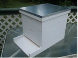 Bee Hive Langstroth 10 Frame W Honey Super All Frames And Foundation
