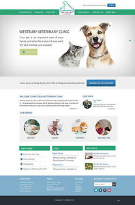 Cms Website Design Package With Free Hosting