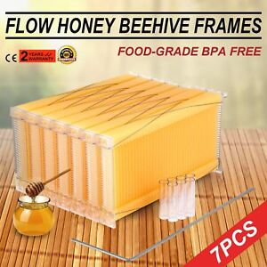 7pcs Auto flowing Honey Beehive Frames Kit Auto Raw Bee Hive Beekeeping Us Stock