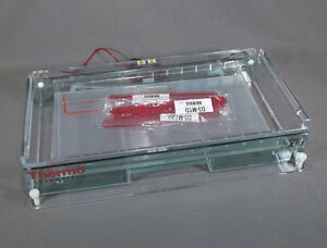 Thermo Scientific Owl A3 1 Horizontal Wide Gel Electrophoresis System