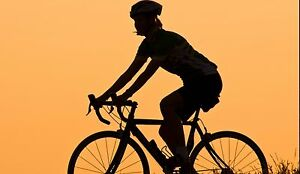 Usa Bike And Cycle Website free Domain make 100 Guaranteed Or Pay Nothing