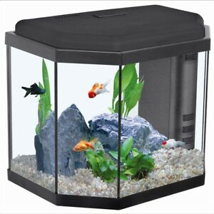 Fully Stocked Dropshipping Fish Aquariums Website Store 300 Hits A Day