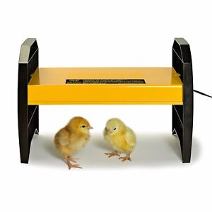 Farm And Ranch Chicken Coop Supplies Brooder Kit Heater 20 Chicks Adjustable