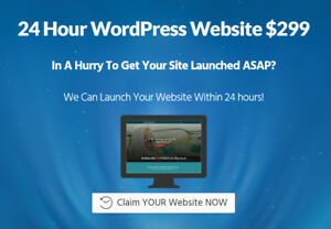Your Wordpress One Page Website In 24 Hours We Build It Live On Screen Share