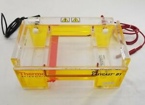 Thermo Scientific Owl Easycast B1 Dna Agarose Electrophoresis System Untested