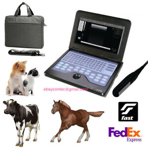 Veterinary Ultrasound Scanner Animal Laptop Machine endorectal Probe Equine cow