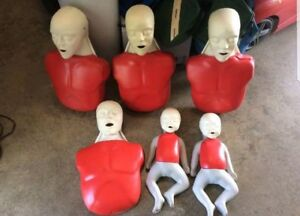 Cpr Training Mannequins Adult And Infant