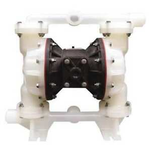 1 Polypropylene Air Double Diaphragm Pump 53 Gpm 180f