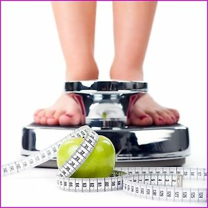 Fully Stocked Diet And Weight Loss Website Business free Domain hosting traffic