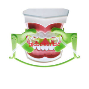 Dental Dentist Oral Dry Field Suction System Lip Cheek Retractor Mouth Opener Us