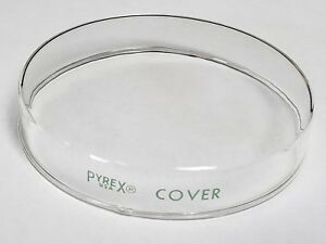 Case Of 144 Pyrex Petri Dish Top Cover Only 100x20mm Laboratory Glassware