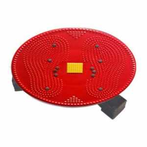 Acs Twister Big Disc Acupressure Pyramid And Magnetic Treatment Therapy