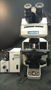 Olympus Bx 43 Microscope Halogen Led W Power Supplies Gfp Inspected 8999