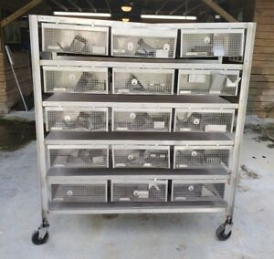 Wahman Large Caging Equipment Stainless Steel Rabbit Bird Research 15 Cages