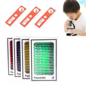 12 48pcs Microscope Slides Specimen Animals Insects Plants Sample Acc Tool Kit
