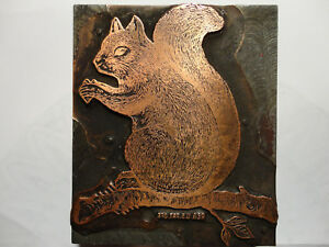 Squirrel Wood And Copper Vintage Offset Printer Block