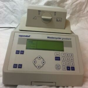 Eppendorf 5331 Mastercycler Gradient Pcr Thermal Cycler 96 well Block Working