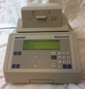 Eppendorf 5333 Mastercycler Pcr Thermal Cycler 96 well Block Working