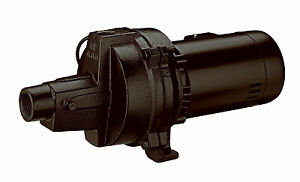 Pentair Water Mp 1hp Shall Well Pump Mp10s