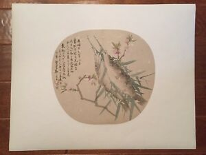 Antique Chinese Qing Dynasty Fan Shaped Watercolor Painting On Silk Album Page