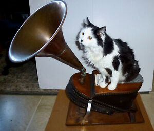 Antique Foghorn Without Cat