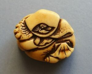 19th Century Antique Netsuke Shells And Crab 2