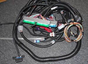 New Blue Green Ls 1 Ls 6 Stand Alone Motor Trans Wire Harness 24 X Ignition