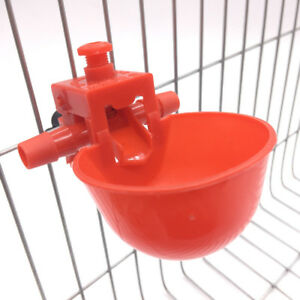 Chicken Drinking Cups Livestock Poultry Farm Equipment New 100 Pcs Waterer Bowls
