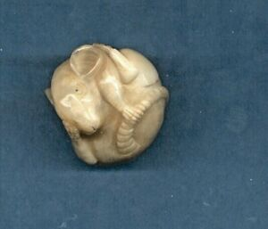 Curled Rat Hand Carved Japanese Figurine 1010 Netsuke