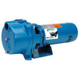 Goulds Water Technology Gt10 Pump centrifugal 1 Hp