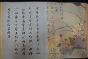 Very Long Old Chinese Scroll Hand Painting Flowers Calligraphy Wangwu Marks
