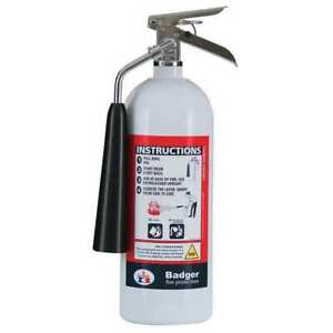 Badger 25078 Fire Extinguisher 5b c Carbon Dioxide 5 Lb