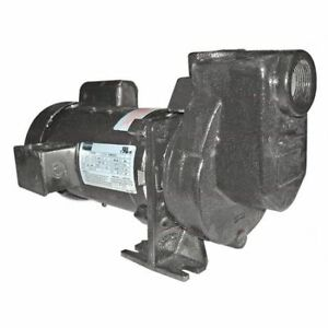 Dayton 2zxp3 Centrifugal Pump 1 Hp 1 Ph 115 208 230
