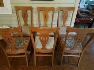 Set Of 6 Antique Dining Chairs Quartersawn Tiger Oak