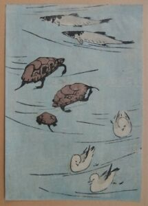 Utagawa Hiroshige C 1850 Japanese Artist Woodblock Print Turtles Fish Birds Nr