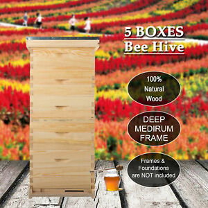 Upgraded 5 Brood Boxes Beehive Honey Bee Hive W Metal Roof And Queen Excluder