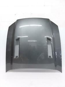 2013 2014 Ford Mustang Gt Front Hood Bonnet Shell Cover Panel Gray 13 14 Oem