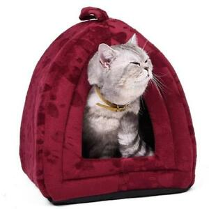 Cat House Website Business affiliate guaranteed Profits for The Usa Market