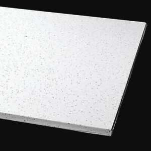 Armstrong 1716b 48 L X 24 W Clean Room Ceiling Tile