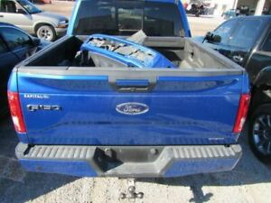 Trunk Hatch Tailgate With Tailgate Step Fits 15 17 Ford F150 Pickup 1999045