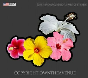 Hawaiian Hibiscus Flowers Bookey Sticker Car Window Truck Vinyl Decal 4 Bbg