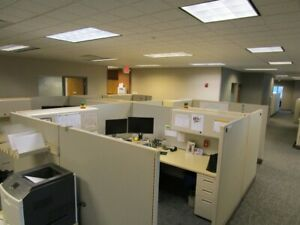 50 Herman Miller Office Cubicle Modular Systems 8x8 s Super Nice