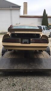 1977 1978 Pontiac Firebird Trans Am Rear Bumper Cover Back