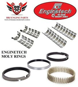 Ford 302 5 0 1987 1991 Enginetech Rod Main Bearings With Moly Piston Rings
