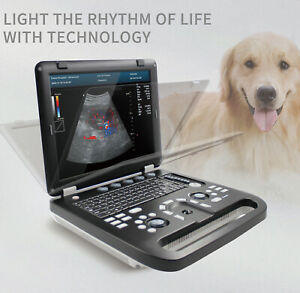 Color Doppler Veterinary Ultrasound Scanner Machine rectal Probe Pw Cw Horse cow