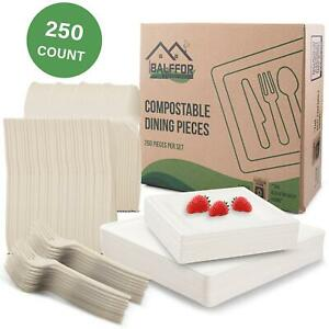 Square Compostable Eco friendly Plates Silverware 250 Count Set