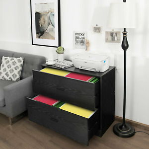 2 drawer Lateral File Cabinet With Adjustable Bars For Home And Office