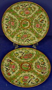 Pair 19th Century Chinese Famille Rose Export Porcelain Rose Canton Plates
