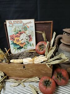 Old Primitive Antique Vintage Folk Art Style Ferry Seed Annual Flower 1897 Sign